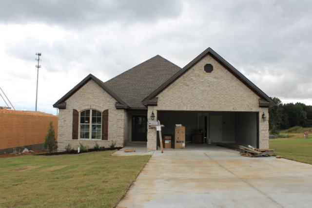 761 Sadie Lane, Jonesboro, AR 72404 (MLS #10076045) :: Halsey Thrasher Harpole Real Estate Group