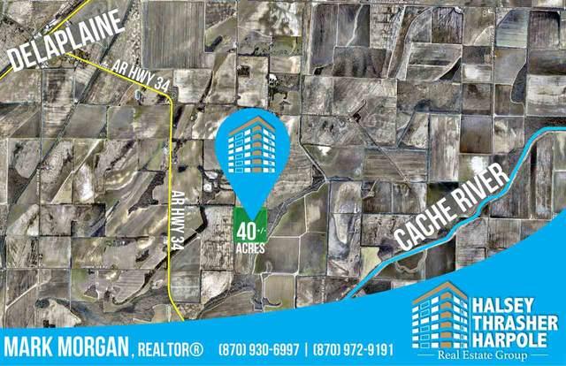 Greene 116 Rd., Delaplaine, AR 72425 (MLS #10083361) :: Halsey Thrasher Harpole Real Estate Group