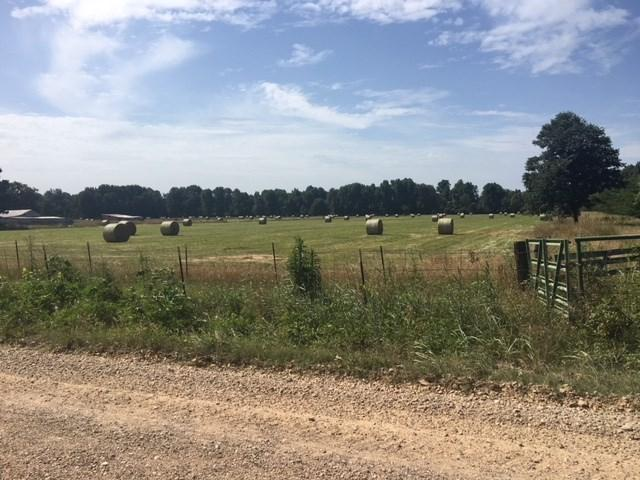 128 acres Tract 3 Cr 952, Brookland, AR 72417 (MLS #10074955) :: REMAX Real Estate Centre