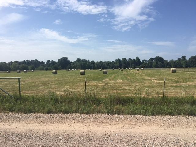 11.49 acres Tract 2 Cr 952, Brookland, AR 72417 (MLS #10074959) :: REMAX Real Estate Centre