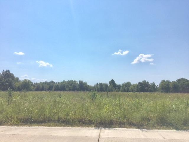 LOT 5 Orval Orlan Drive, Jonesboro, AR 72404 (MLS #10076948) :: Halsey Thrasher Harpole Real Estate Group