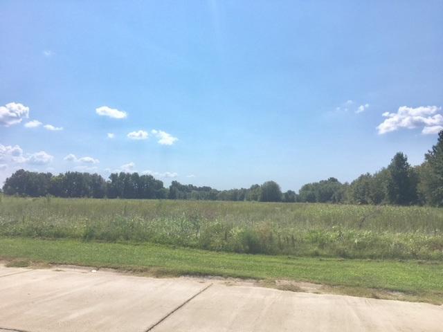 8.5 ACS 2528 Alexander, Jonesboro, AR 72401 (MLS #10076952) :: Halsey Thrasher Harpole Real Estate Group