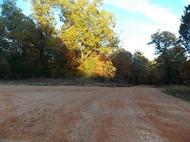 000 Arkansas Travelers Road, Highland, AR 72542 (MLS #10077491) :: Halsey Thrasher Harpole Real Estate Group