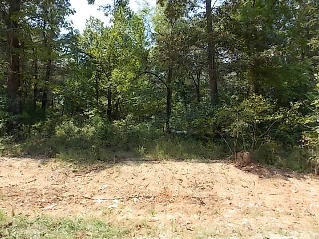 Lot 33 Goodwin Cove, Ash Flat, AR 72513 (MLS #10082716) :: Halsey Thrasher Harpole Real Estate Group
