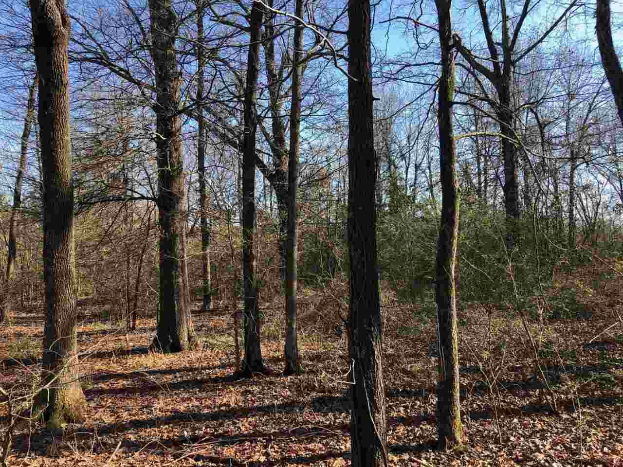 19.95 Acres Cr 963 - Photo 1