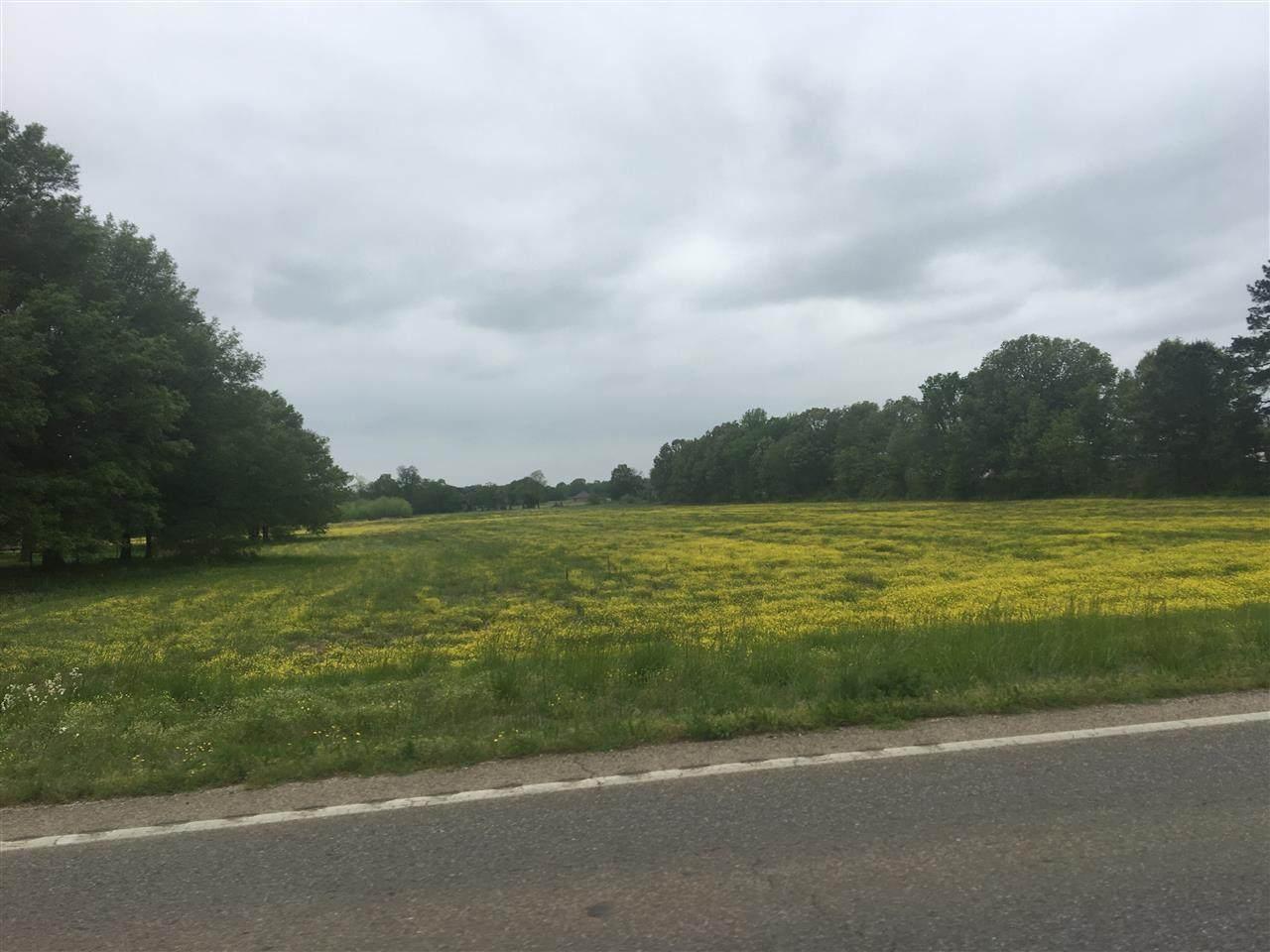 11.89 acres Hwy. 351 - Photo 1