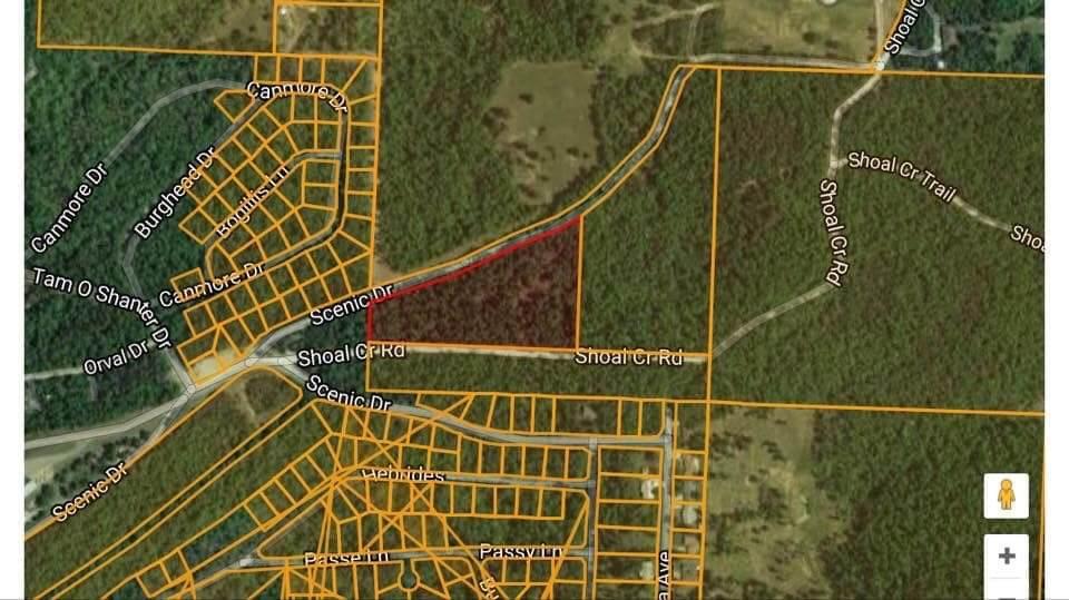 9.59 Acres Shoal Creek Rd. - Photo 1