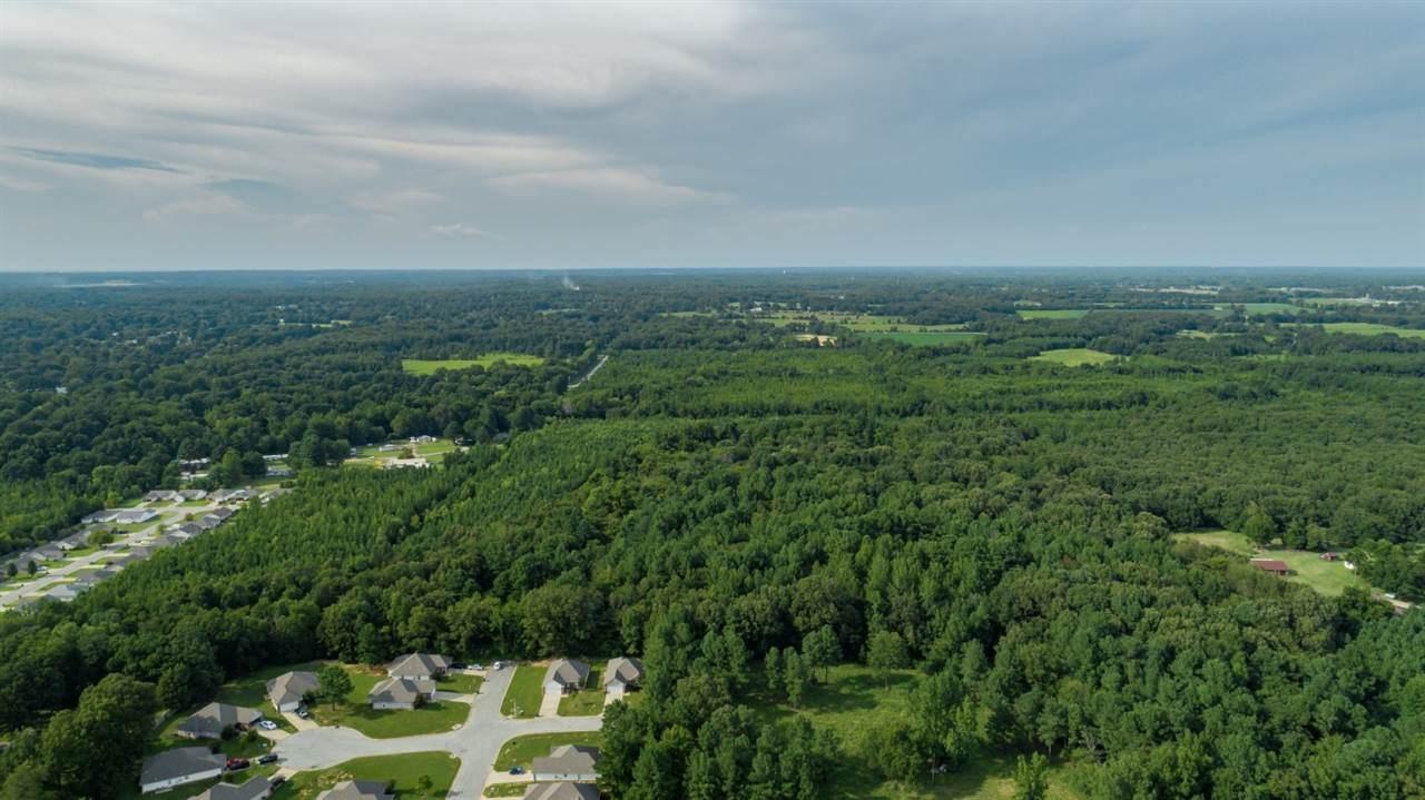 74.5 Acres Greensboro Road - Photo 1