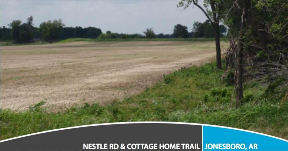 2403 Nestle Road - Photo 1