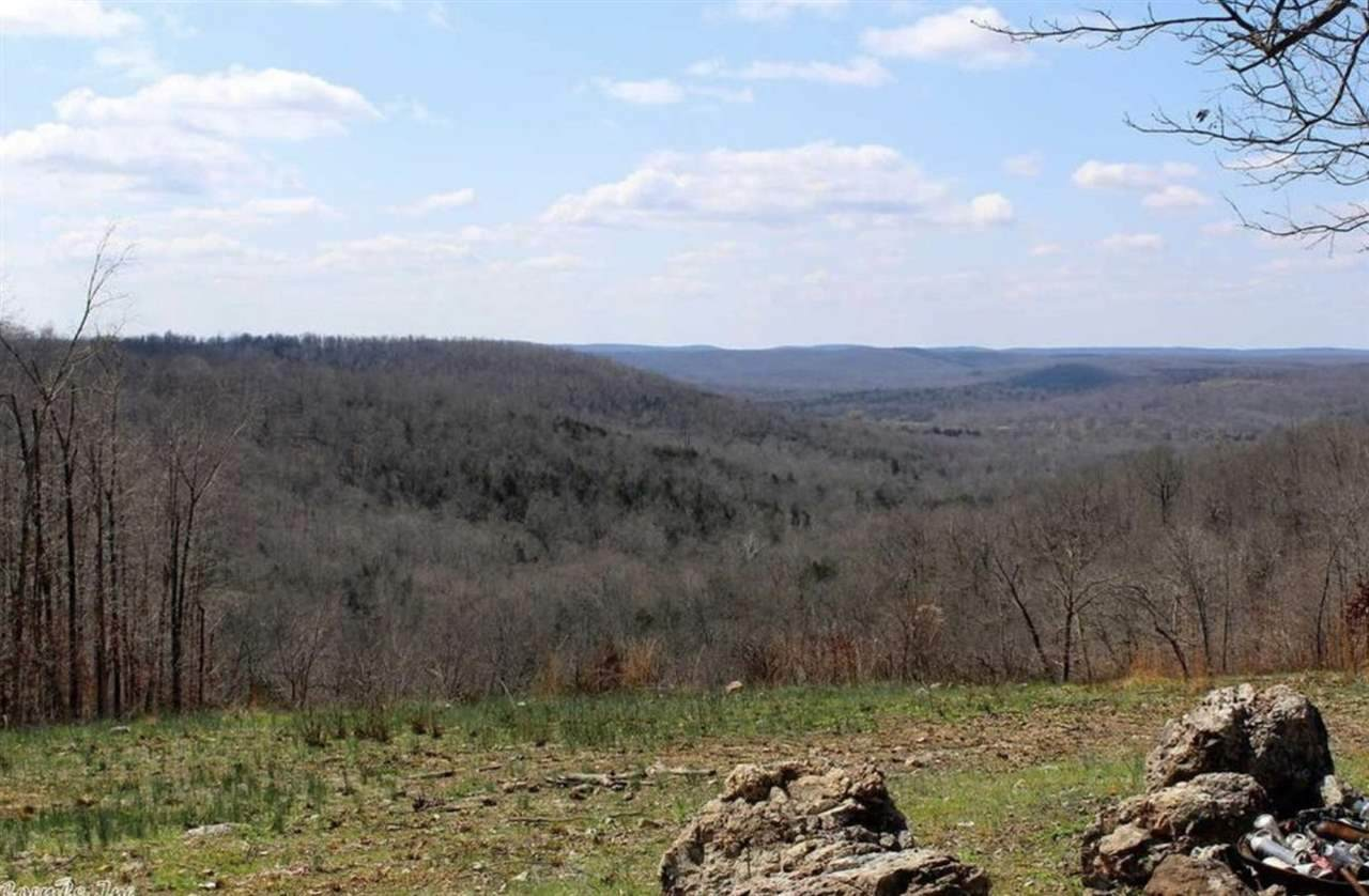 2 Paw Paw Ridge Rd - Photo 1