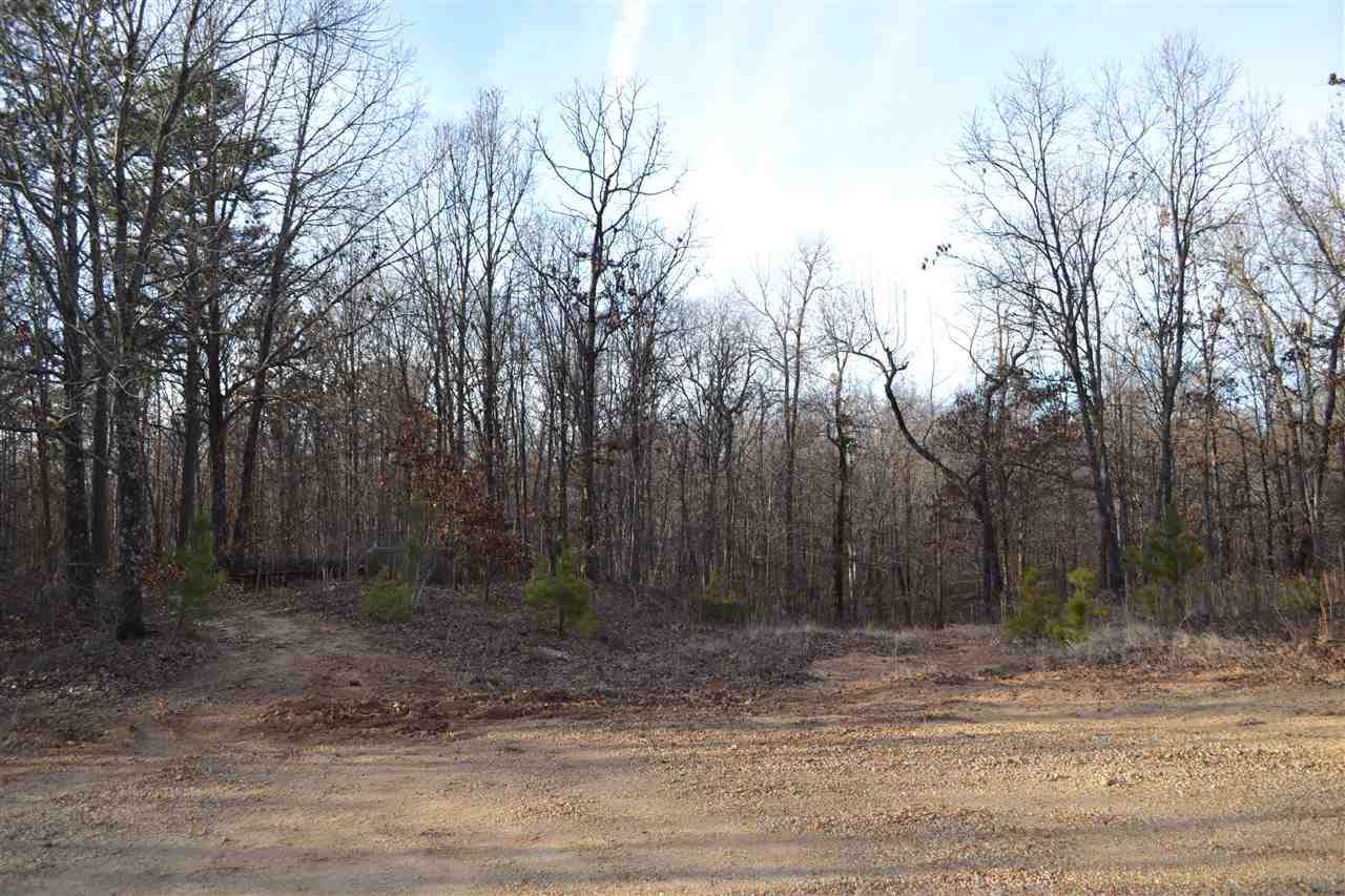11 acres Oak Creek - Photo 1