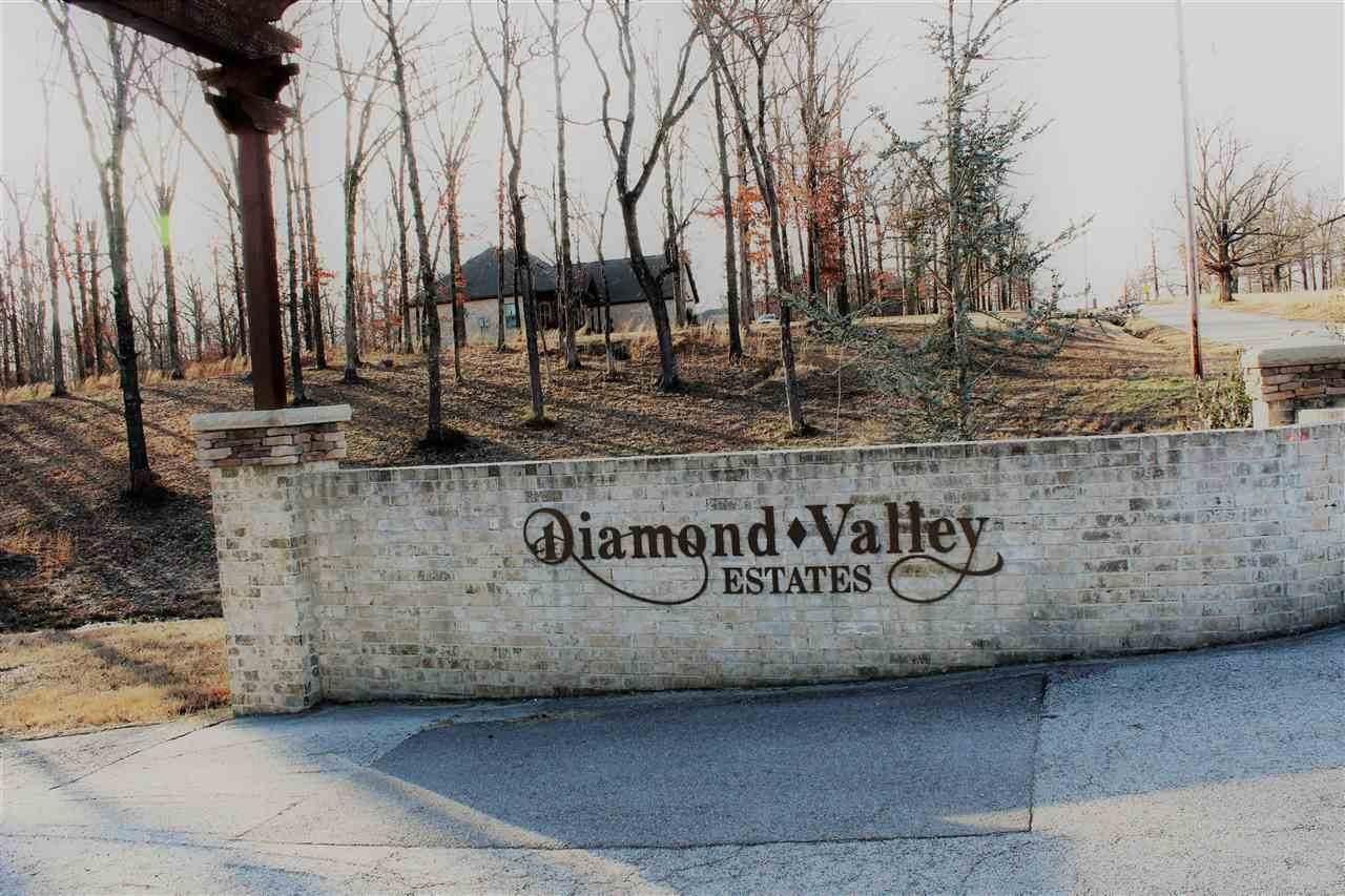 Lot 10 Diamond Valley Estates - Photo 1