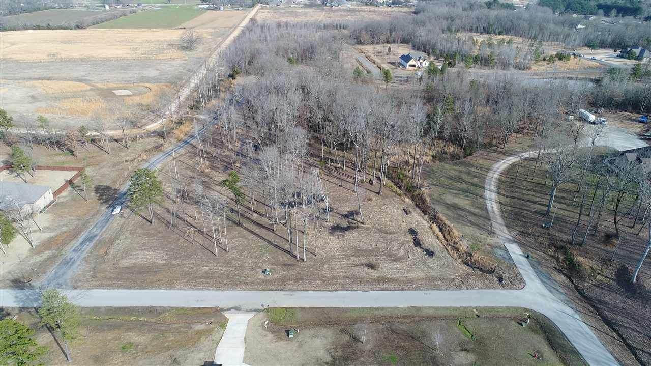 Lot 18 Diamond Valley Estates Phase II - Photo 1