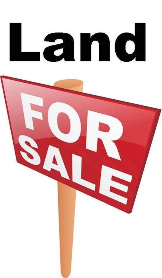 1 Acre Cr 963, Brookland, AR 72417 (MLS #10090226) :: Halsey Thrasher Harpole Real Estate Group