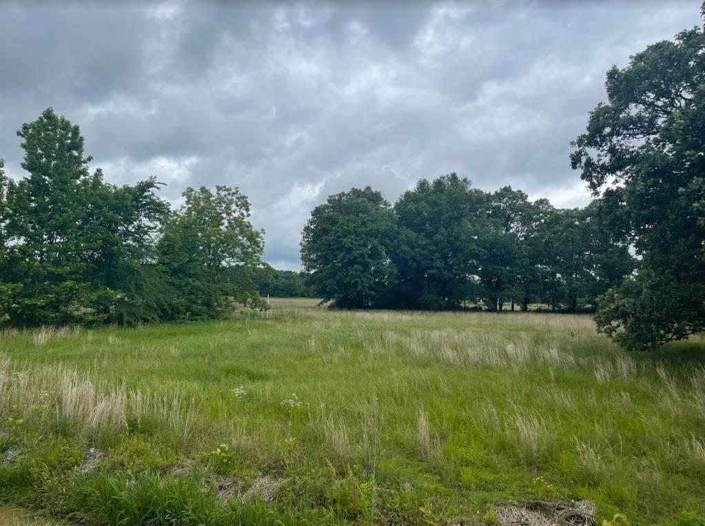 2 acres Cr 768 - Photo 1