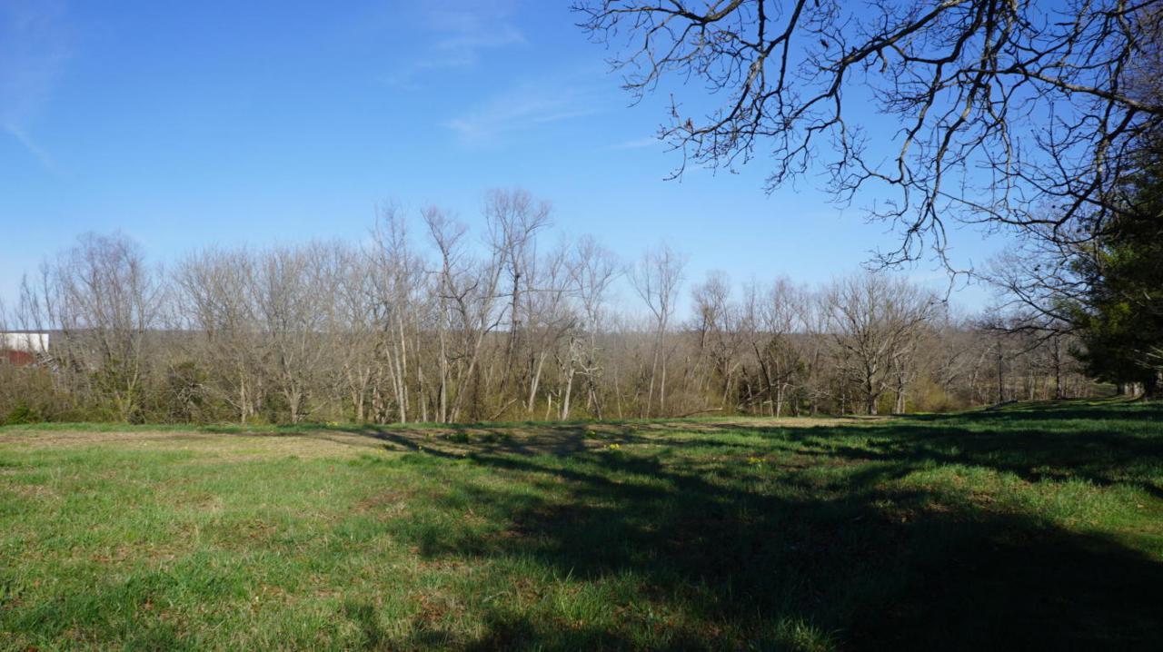 7.4 Acres Genesis Rd - Photo 1