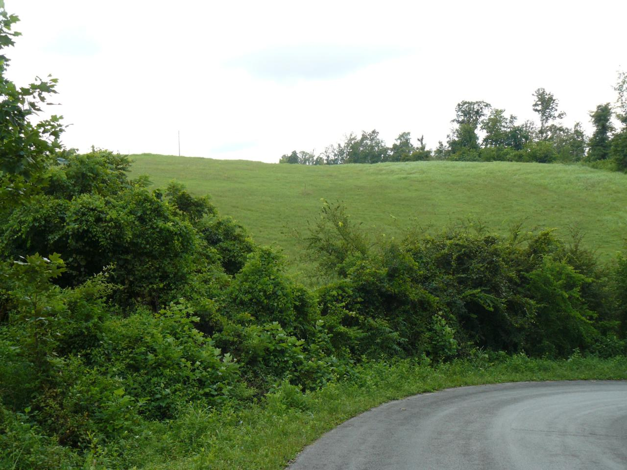 Lot 15 Lookout Drive - Photo 1
