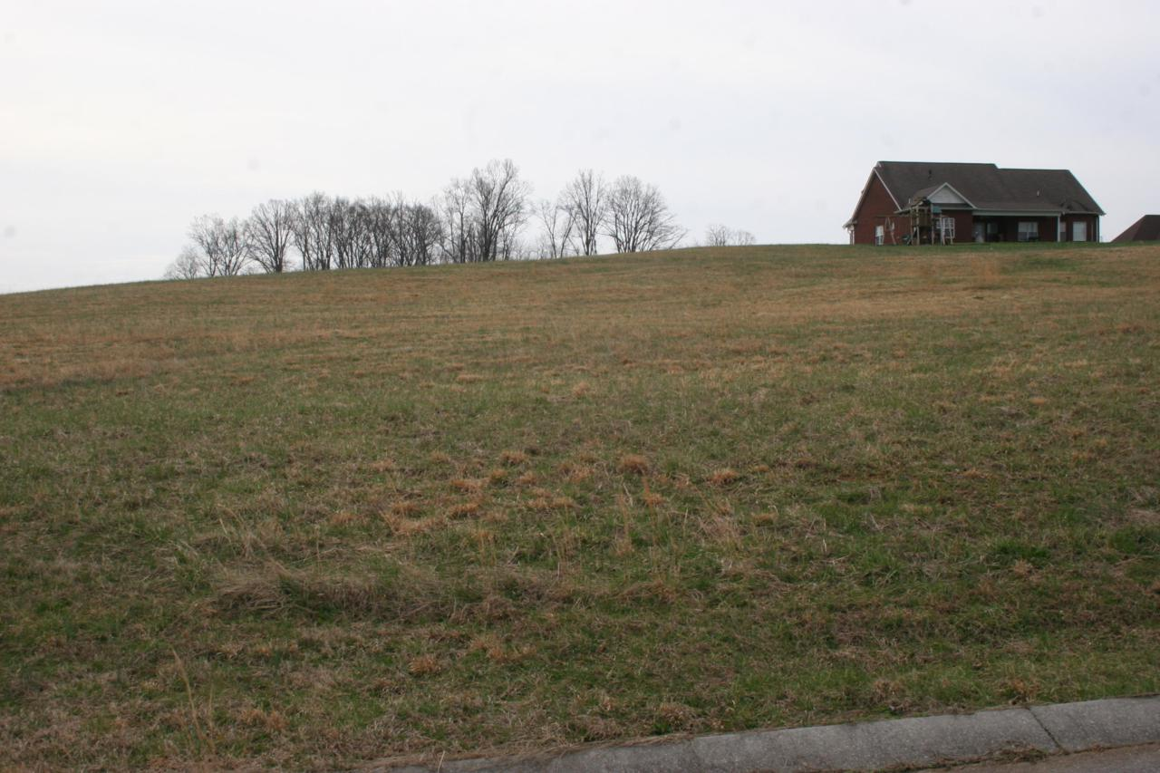 Southern Hill Drive - Photo 1