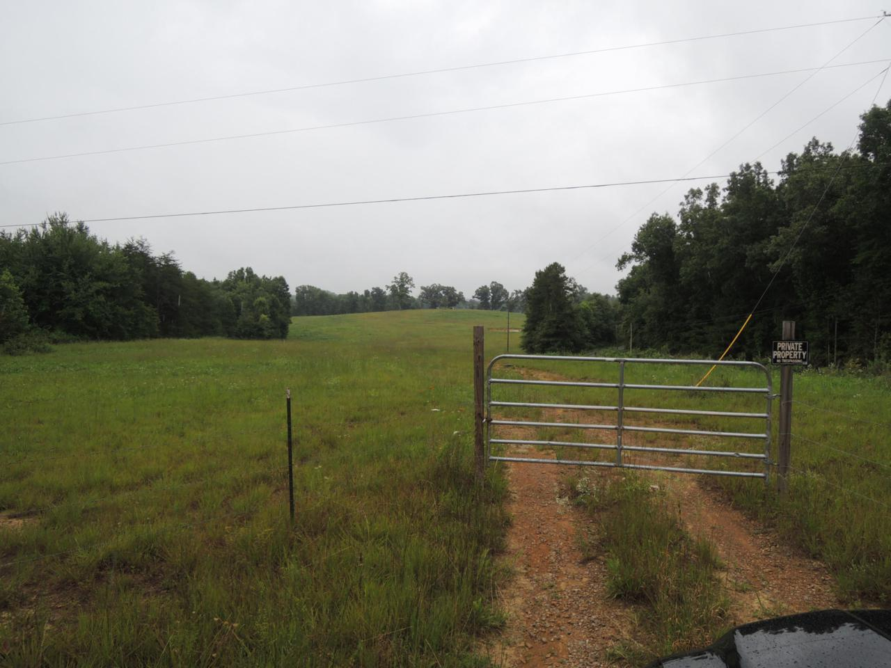 Coon Creek Rd - Photo 1