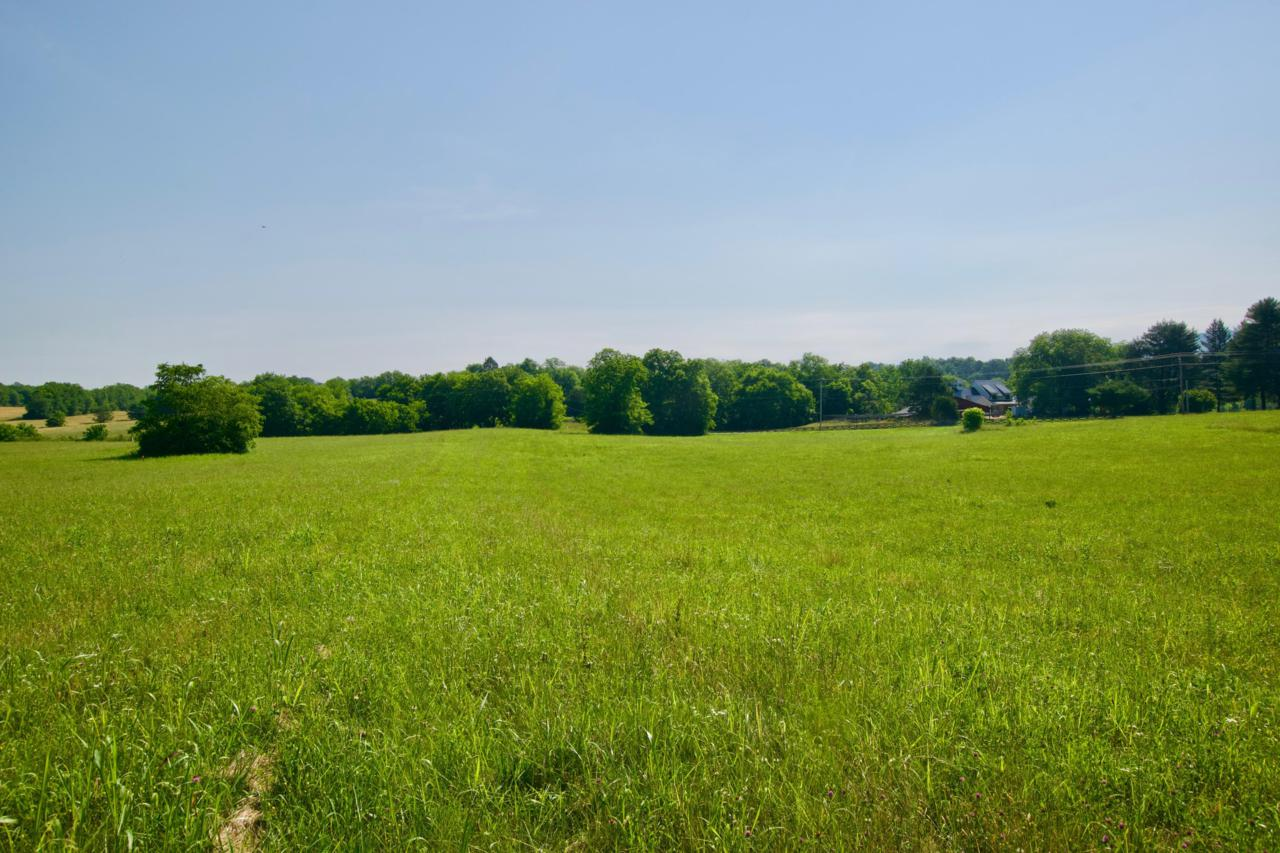 Lot 7 Chilhowee View Rd - Photo 1