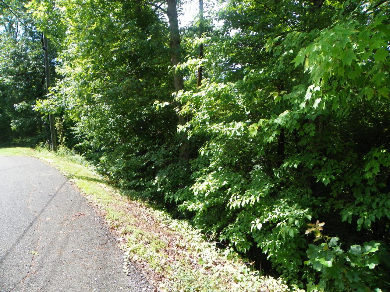 Lot# 50 Red Cedar Lane - Photo 1