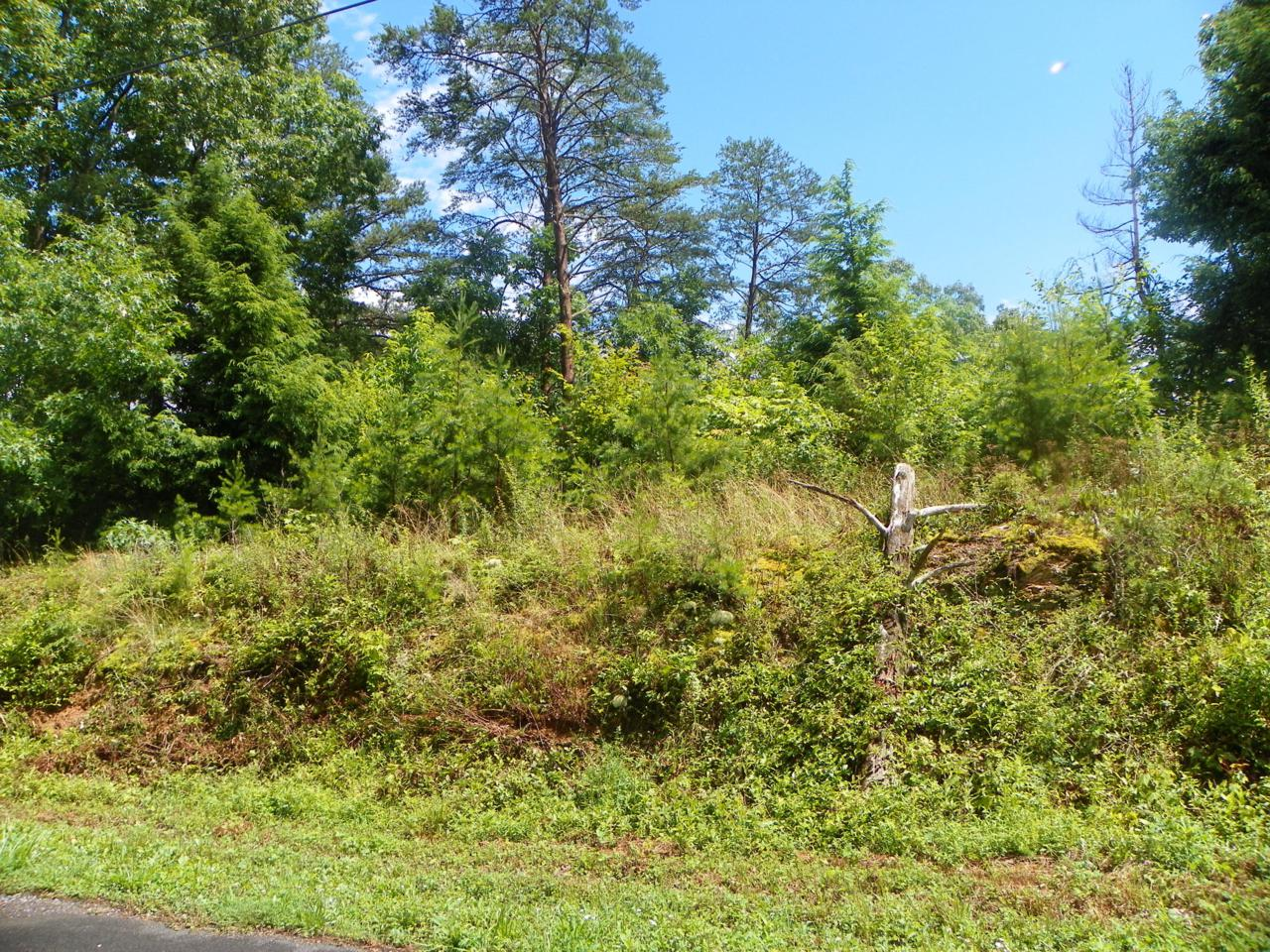 1430 Red Cedar Lane - Photo 1