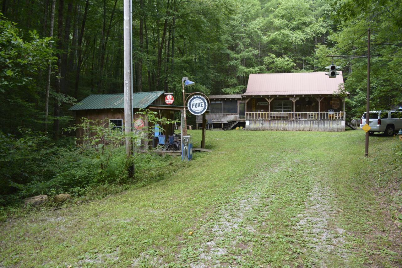 191 Towee Mountain Drive - Photo 1