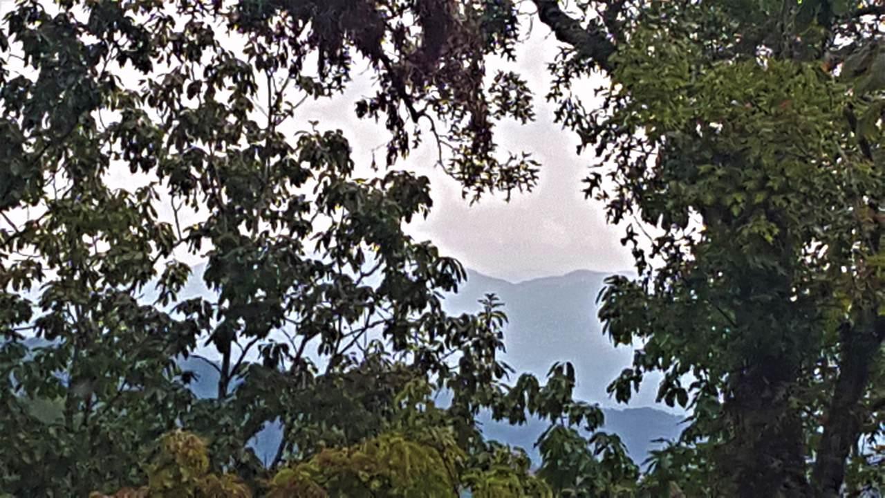 Tract 10r Indian Ridge Drive - Photo 1