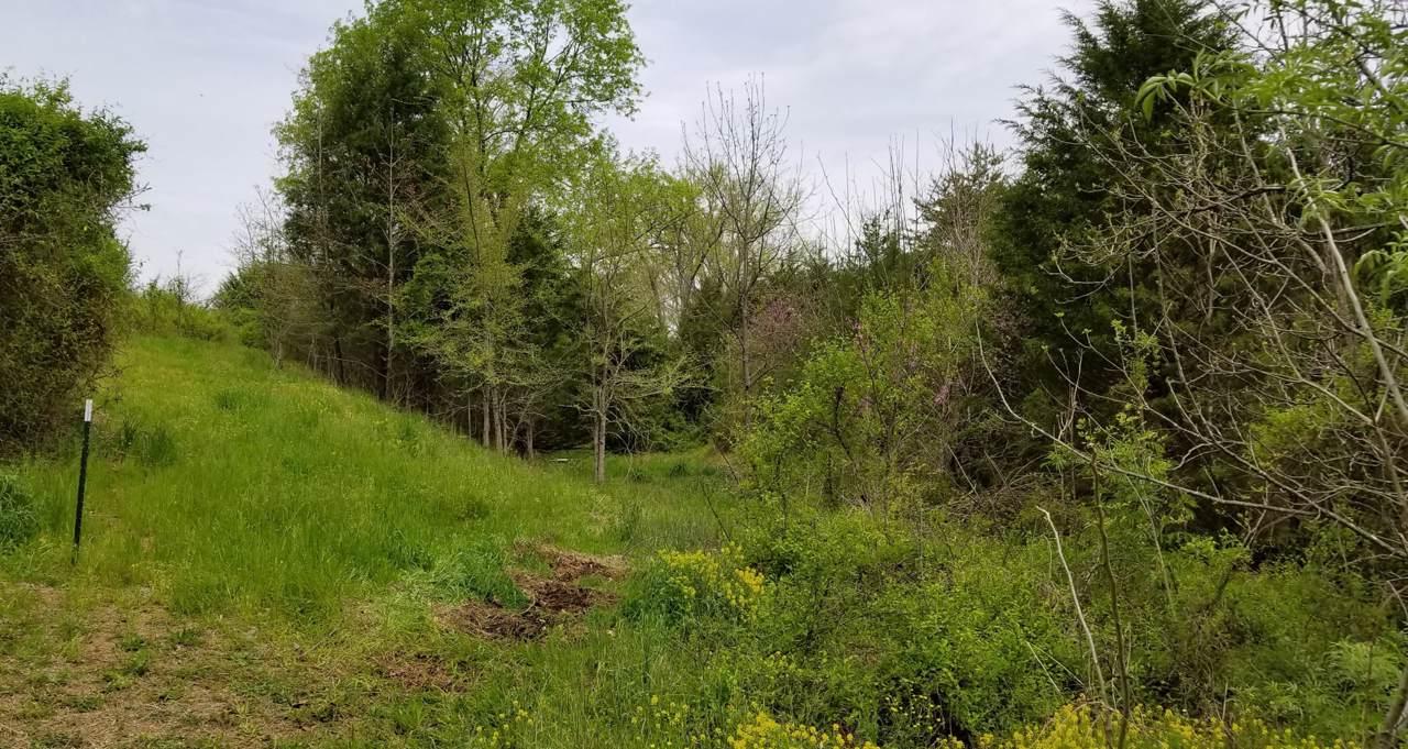 N Knob Creek Rd - Photo 1