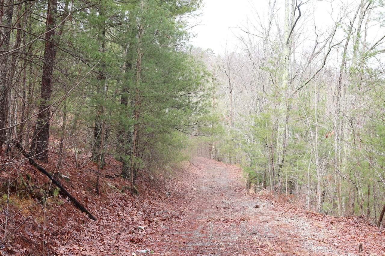 1226 Steer Creek Rd - Photo 1