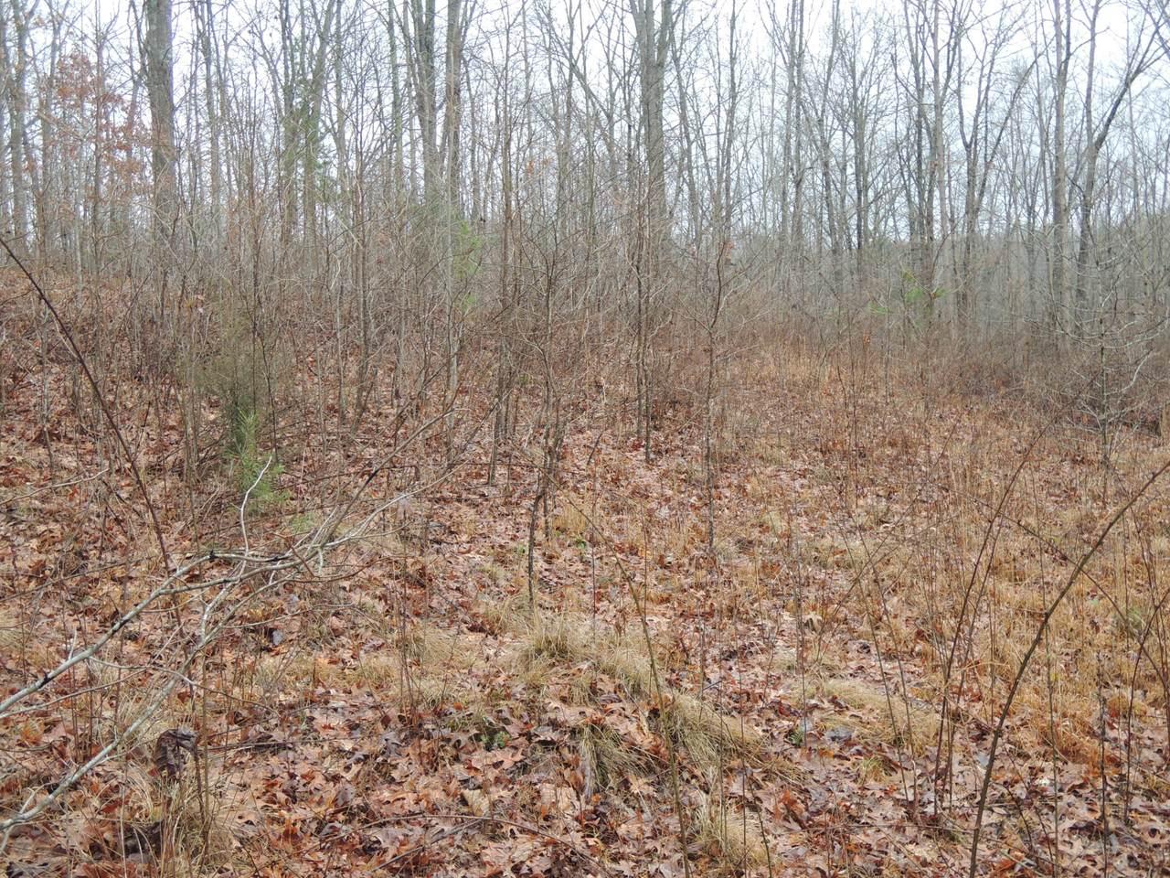 Dulog Trail - Photo 1