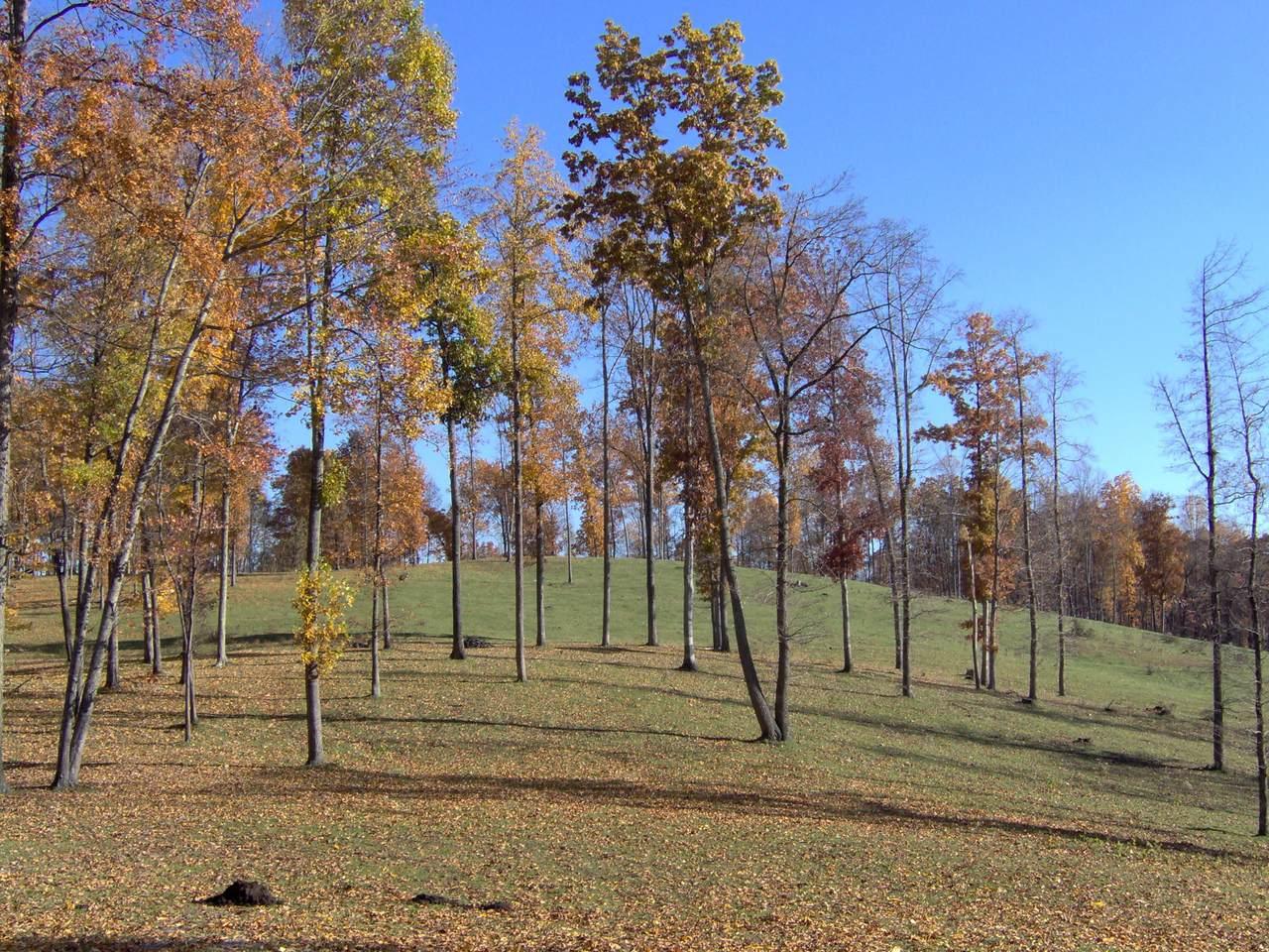 Holt Ridge Road - Photo 1