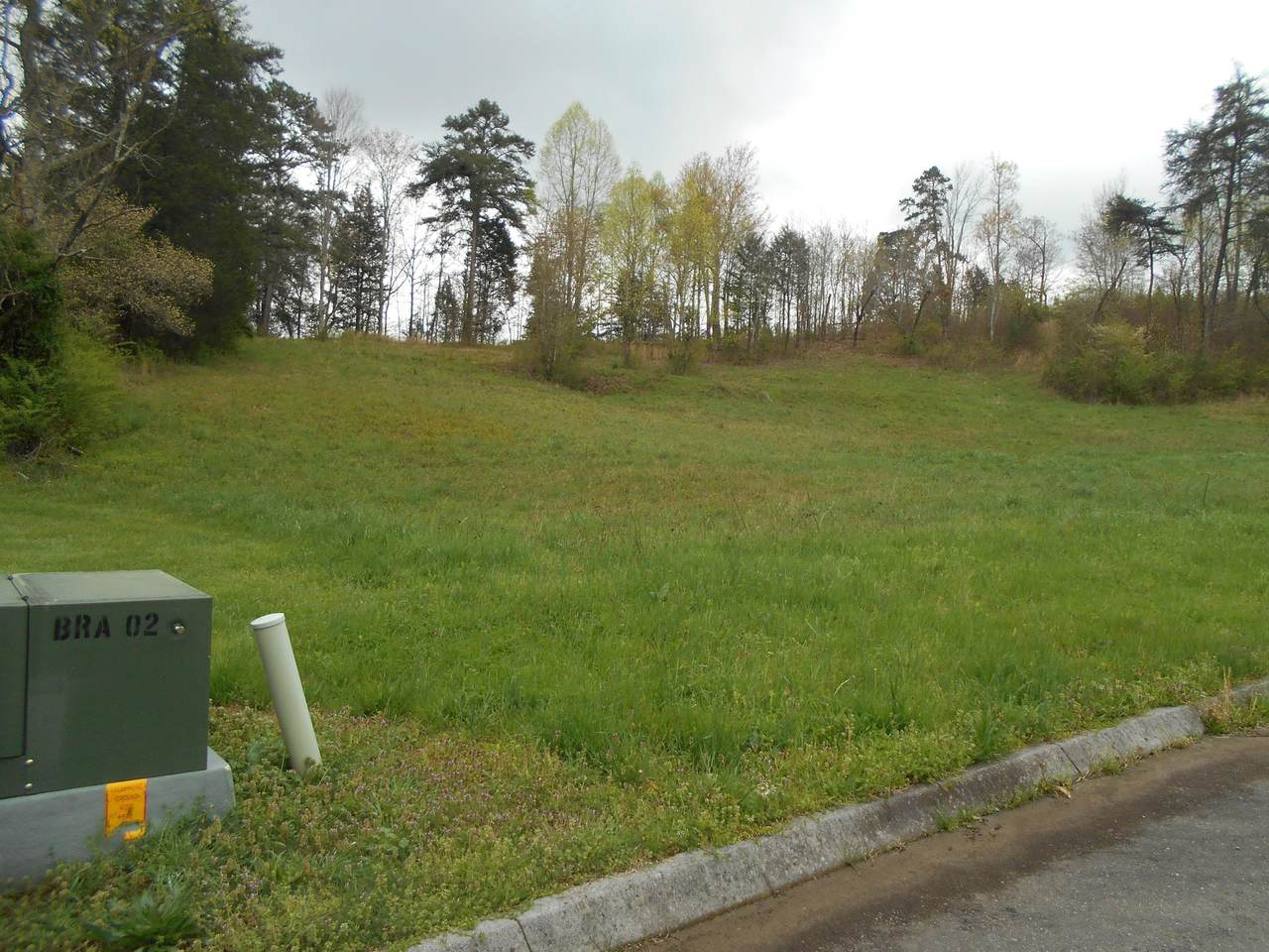 Briar Ridge Lane - Photo 1