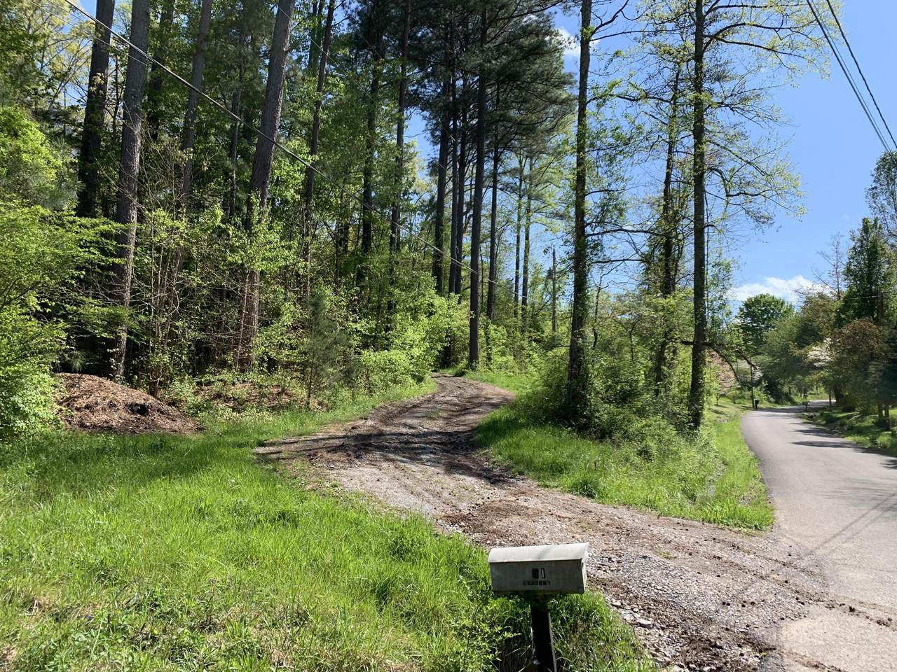 Foust Hollow Rd - Photo 1