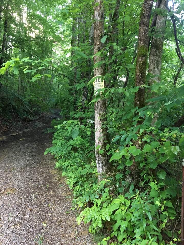Happy Creek Rd - Photo 1