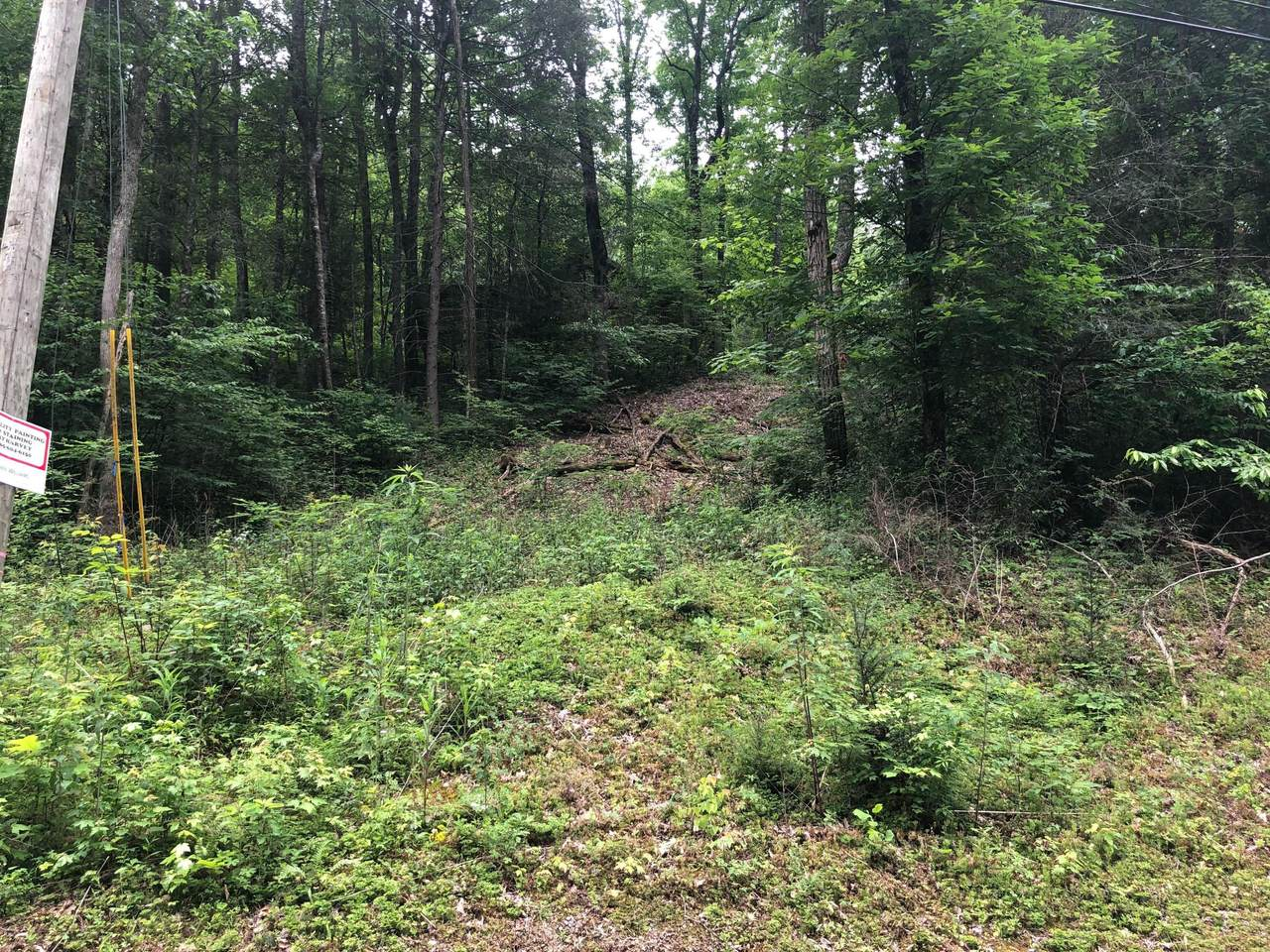 Hickory Hollow Way - Photo 1