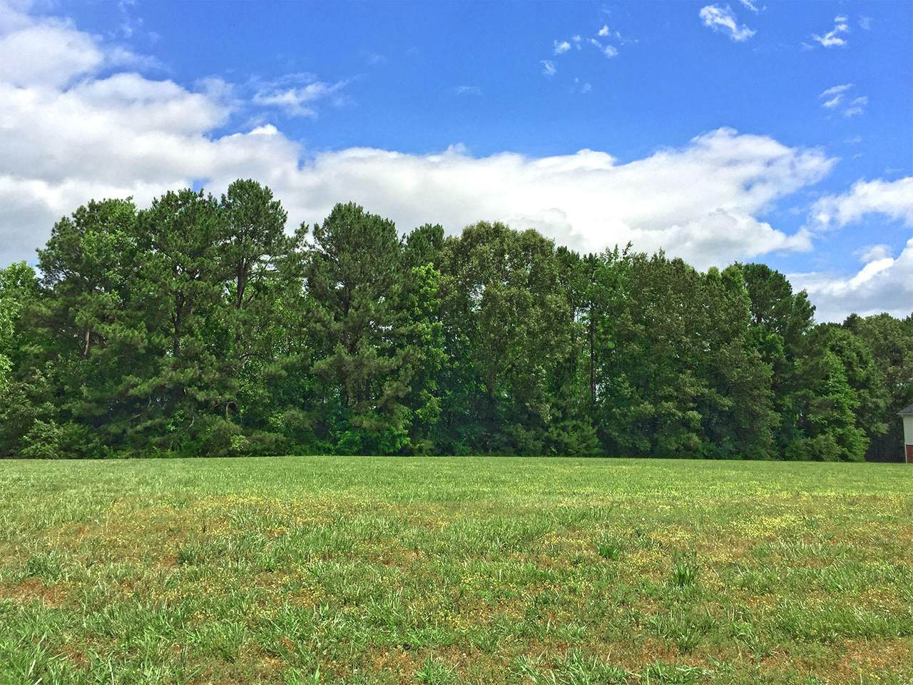 Lot 45 Big Oak Drive - Photo 1