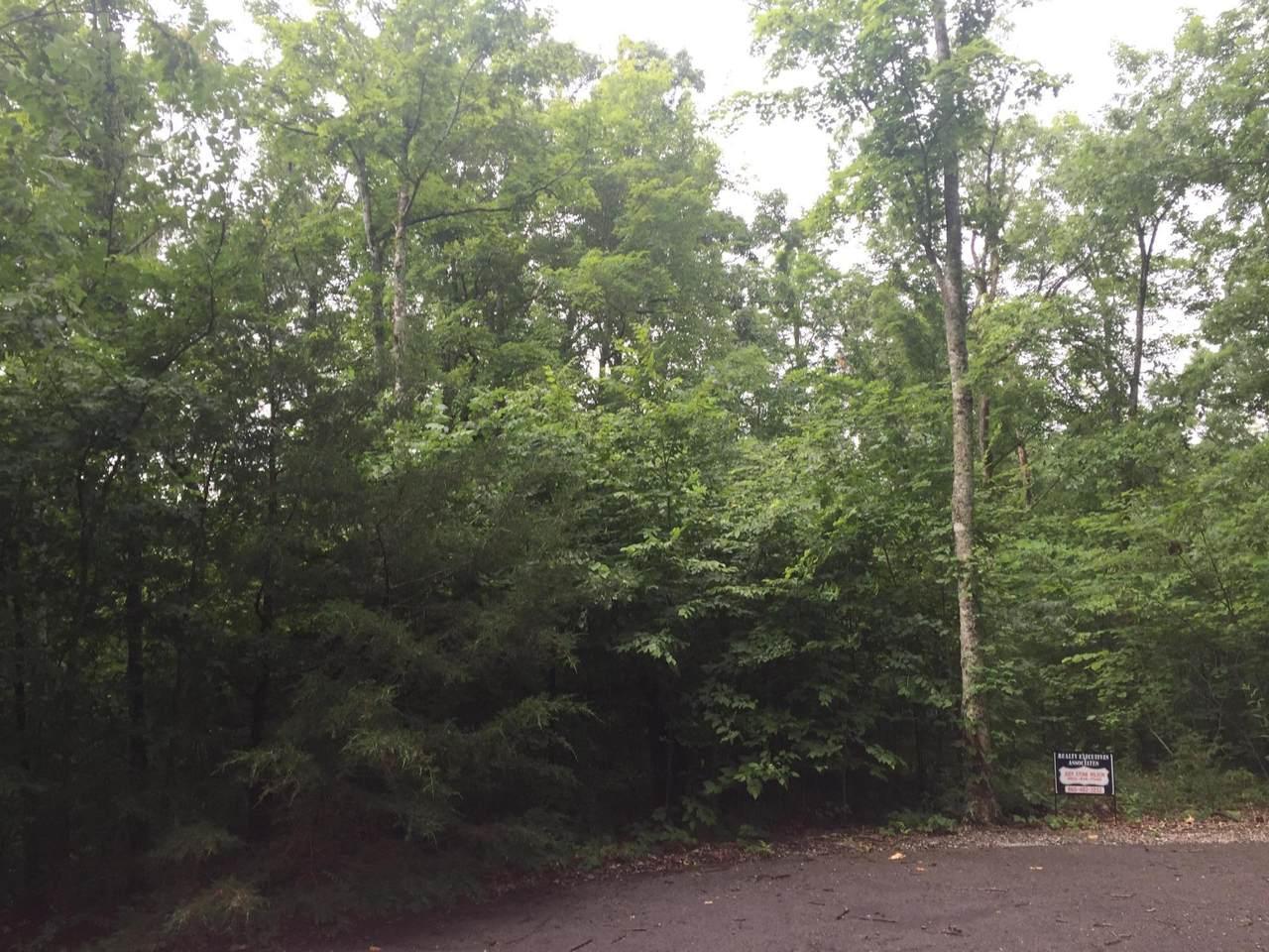 Mitchell Creek Pointe - Photo 1