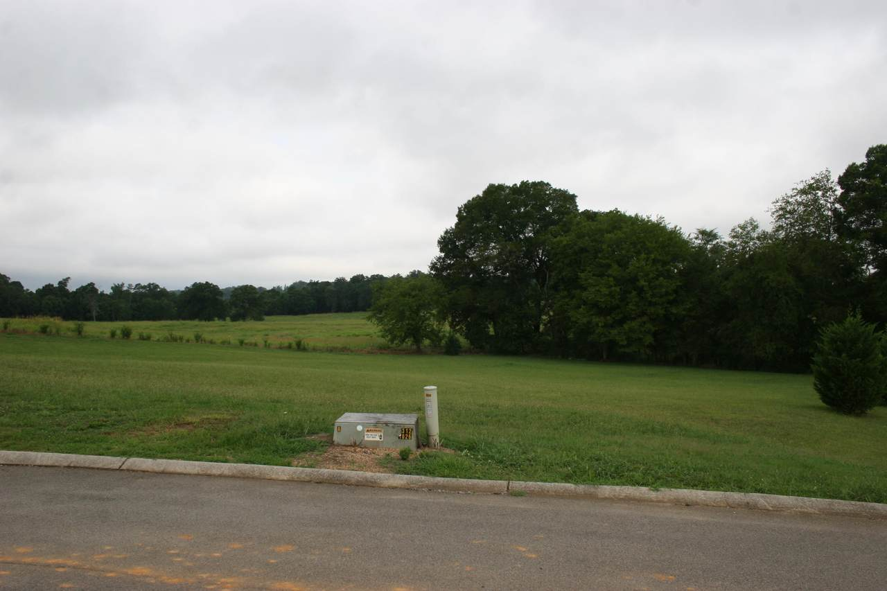 Old Hickory Circle - Photo 1