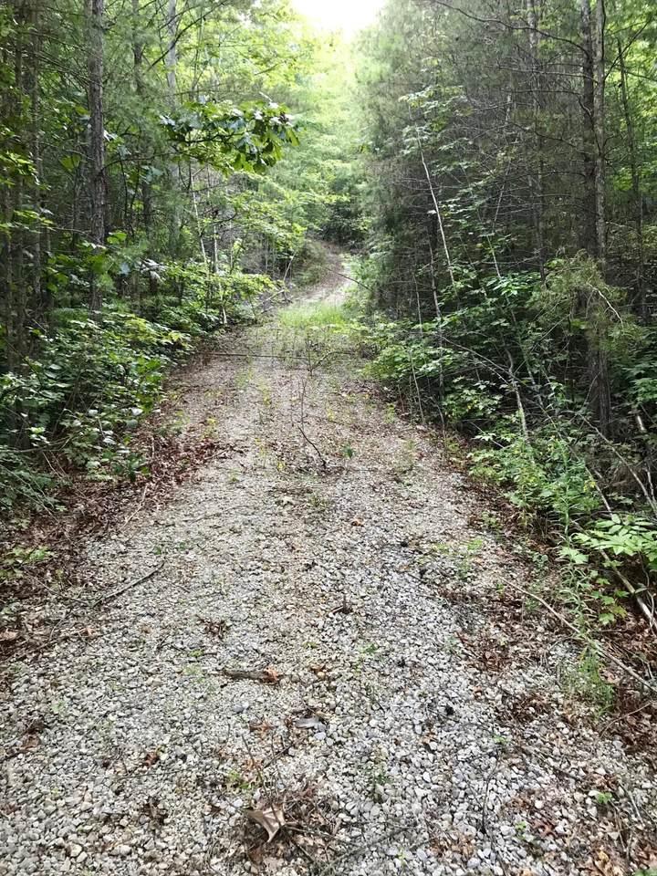 6.7 Steer Creek Rd - Photo 1