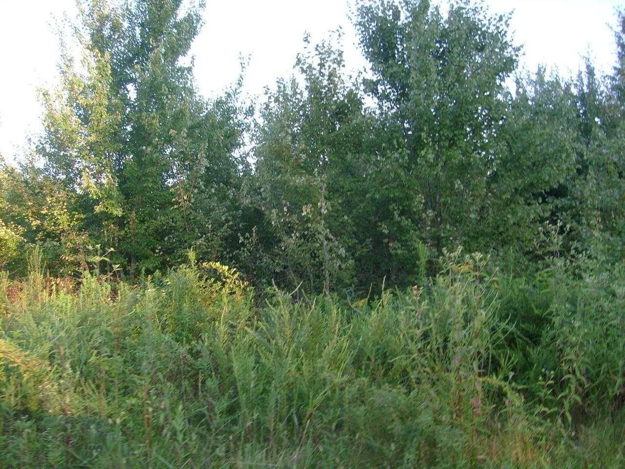 1129 Arrowhead Drive - Photo 1