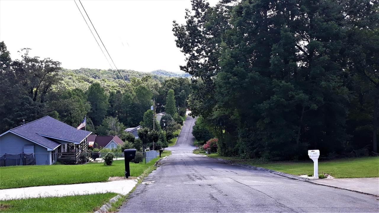 0 Royal View Drive - Photo 1