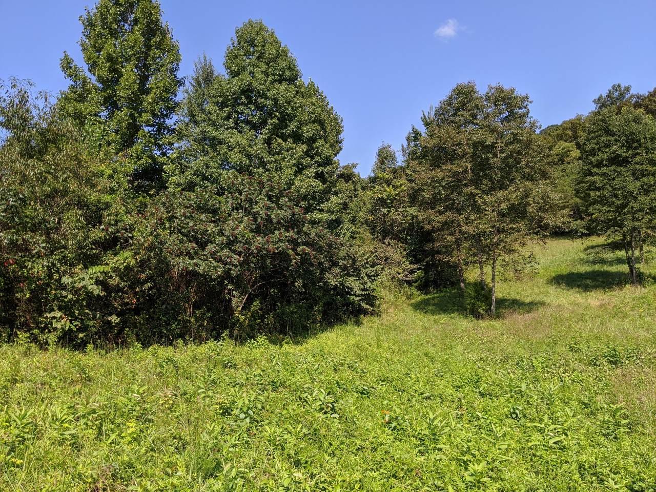 0 6.59 Acres Glenoby Rd - Photo 1