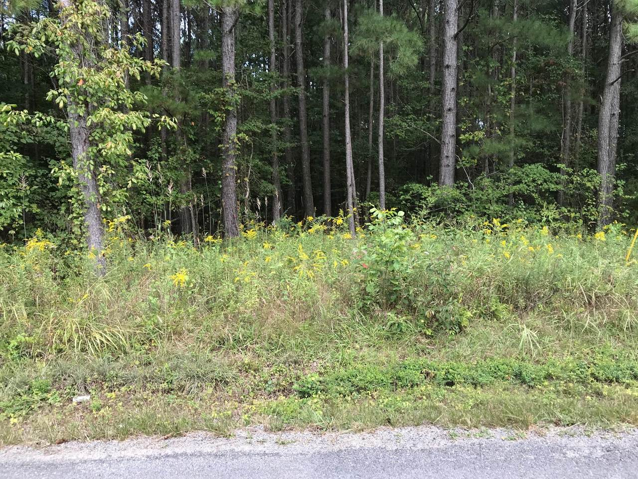 County Road 788 - Photo 1