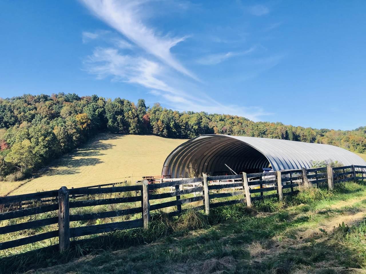 45 Acres Chestnut Ridge - Photo 1