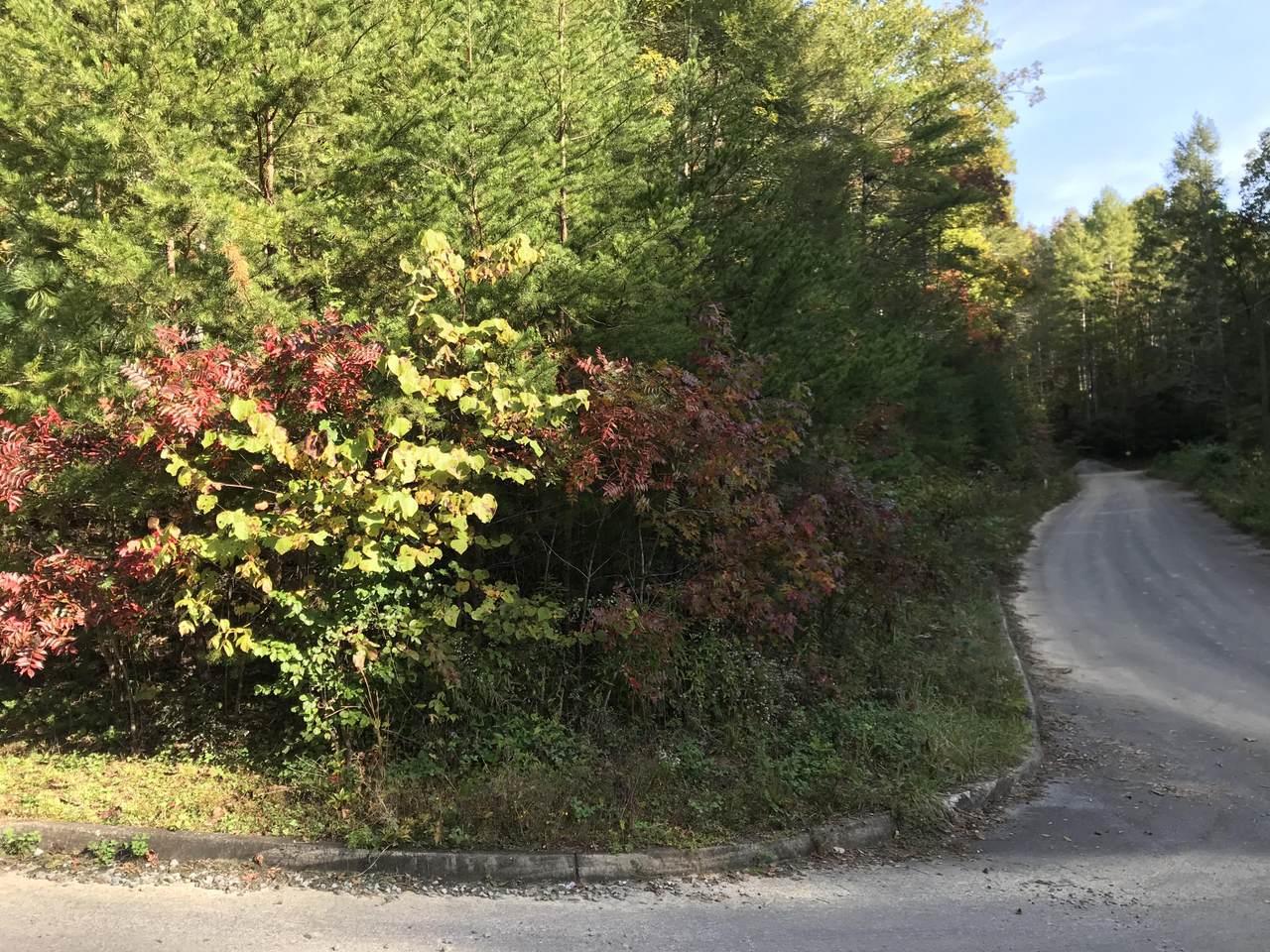 Harmony Lane - Photo 1