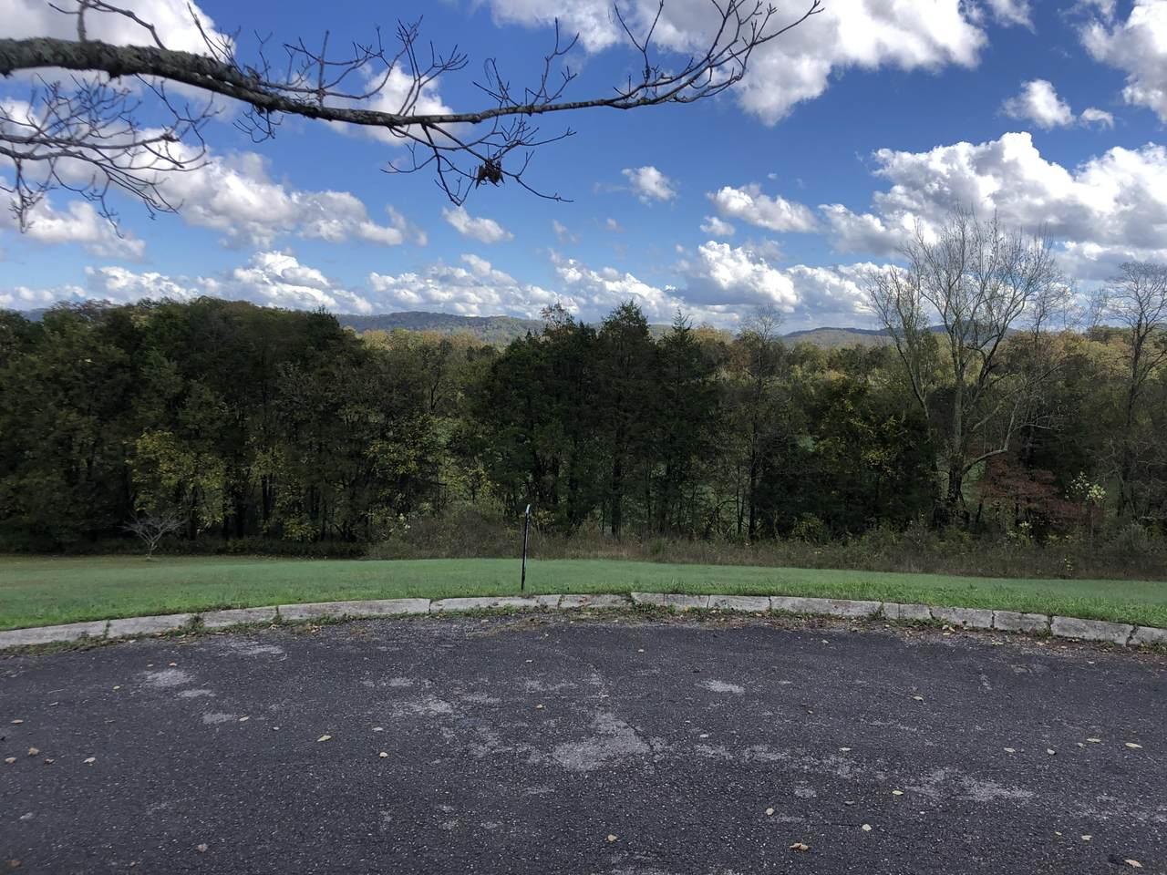 Lot 8 Grand View Lane - Photo 1