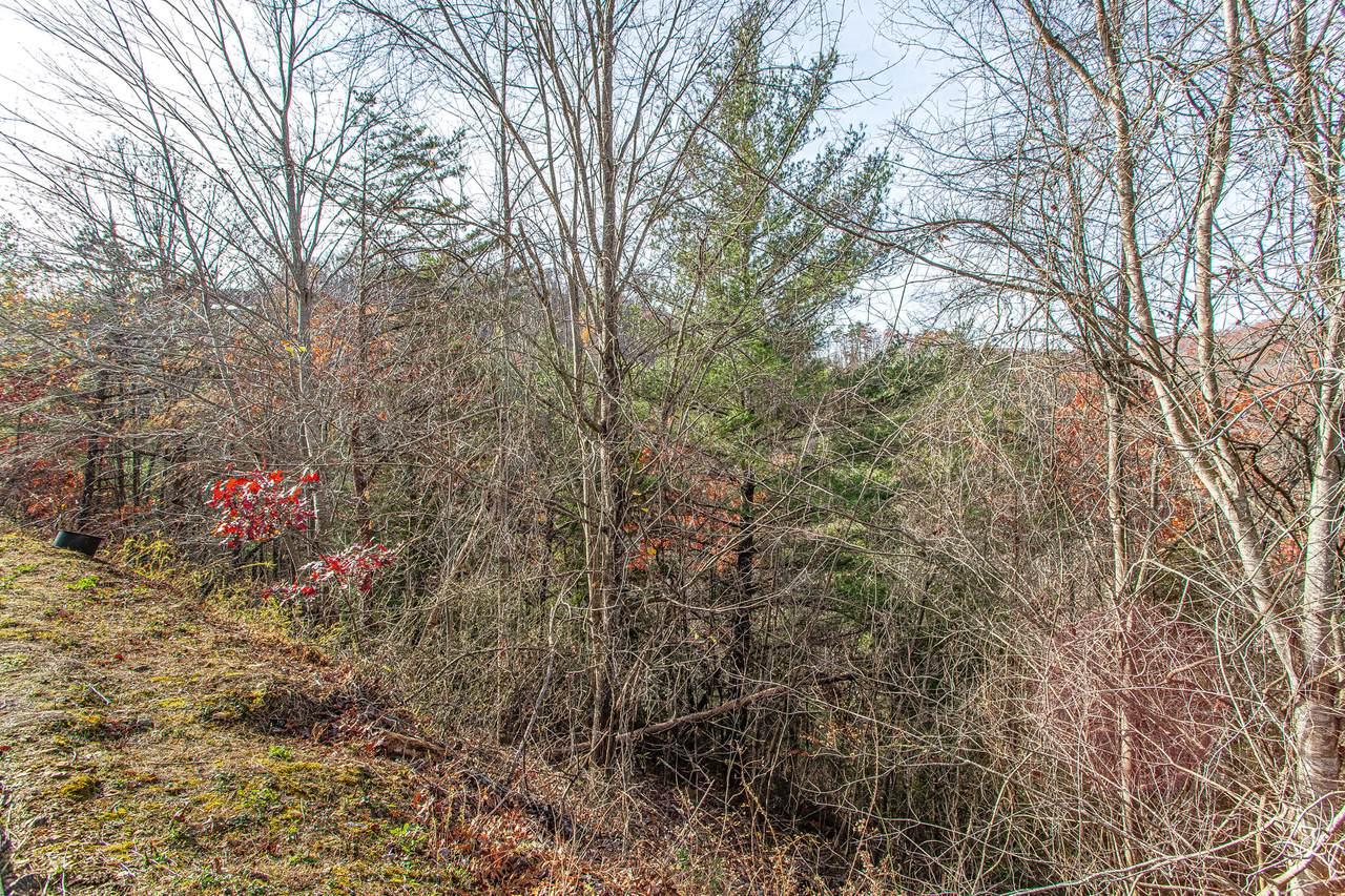 Lot #54 Smoky Ridge Way - Photo 1