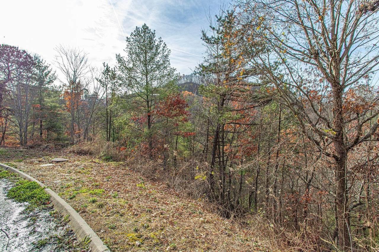 Lot #55 Smoky Ridge Way - Photo 1