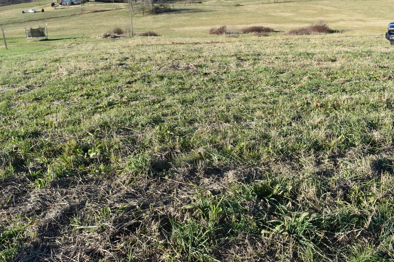Lot 9 Mccleary Rd - Photo 1